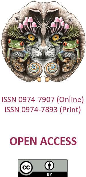188826viii169144-9154 html